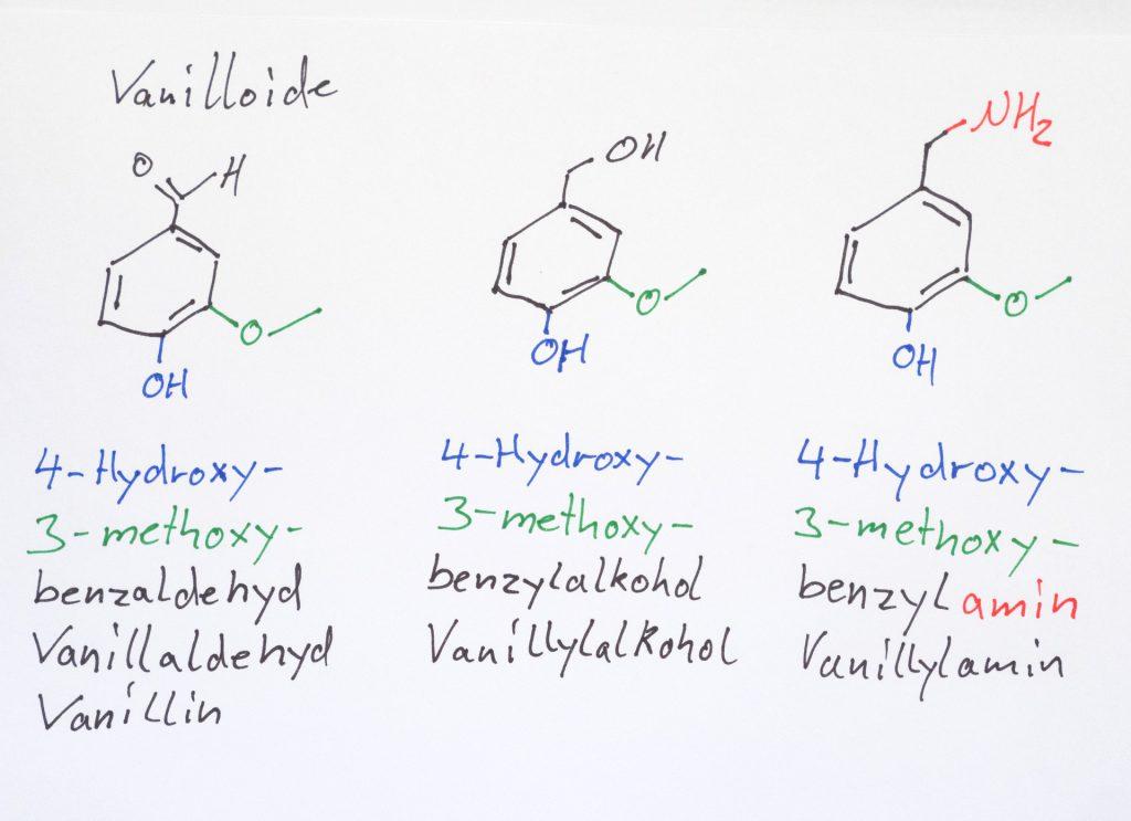 Vanilloide, gezeichnet von Bernd
