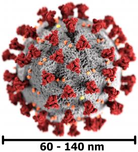 3D-Grafik des SARS-CoV-2 mit Maßstab