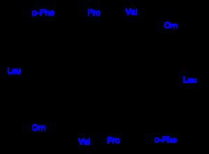 Strukturformel Gramicidin S